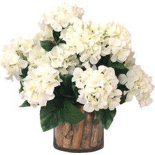 Spring Additions Hydrangea Birch in Flower Pot