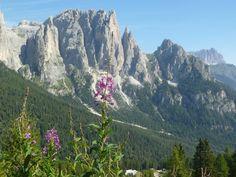 I colori delle Dolomiti in Val di Fassa #trentino #primavera