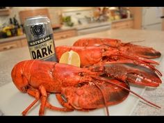 How to Steam Lobster with Beer: Cooking with Kimberly Tailgating Recipes, Beer Recipes, Steamed Lobster, Ale Recipe, New Years Eve Day, Alcohol Drink Recipes, Christmas Cooking, Food Reviews, Sashimi