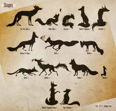 Foxes and Shapes by Culpeo-Fox.deviantart.com on @deviantART