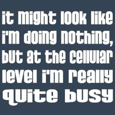 It might look like I'm doing nothing, but at the cellular level, I'm really quite busy.