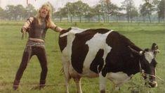 Awkward Family Photos, Hair Raising, Weird And Wonderful, Cow, Punk, Metal, Animals, Growing Out Hair, Animales