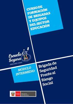 Teresa Clotilde Ojeda Sánchez: Brigada de Riesgo social- Módulo intermedio  PREVA...