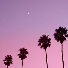 いいね!96件、コメント7件 ― The Two Hand Exchangeさん(@thetwohandexchange)のInstagramアカウント: 「Spring time nights and pink skies 」