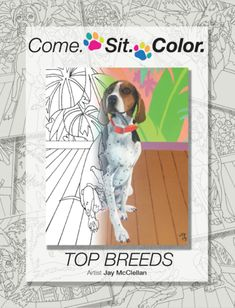 Dog Lover Adult Coloring Book Creator Meet the creator of Come. maker of the dog breed coloring book for adults that we sell offering dog and puppy coloring pages for all ages. Hound Dog Breeds, Best Dog Breeds, Cat Birthday, Animal Birthday, Puppy Coloring Pages, Coloring Books, Book Creator, Beagle Dog, Corgi