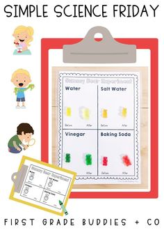 Simple Science: Gummy Bear Experiment | First Grade Buddies Gummy Bear Experiment, Dont Feed The Bears, Kid Experiments, Bad Cats, Easy Science, Recording Sheets, Gummy Bears, First Grade, Kitty