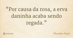 """""""Por causa da rosa, a erva daninha acaba sendo regada."""" — Provérbio Árabe"""