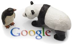 The first rule of making the Panda and Penguin happy is to stick to the fundamentals of search engine optimization Marketing Articles, Seo Marketing, Digital Marketing, Online Marketing, Kung Fu Panda, Google Penguin, Ninja, Seo Packages, Bounce Rate