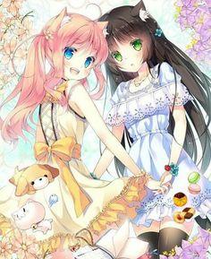 Anime Girls #catgirls