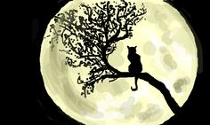 drawings of black cats and the moon - Google Search