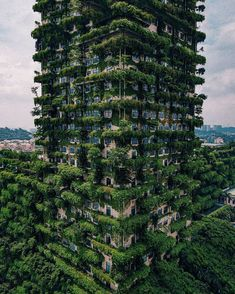 This vertical forest in Foshan China. This building is fortified with lush vegetation that fights air pollution by absorbing and producing oxygen. Nanjing, Places In Europe, Places To Travel, Tourist Places, Shanghai, Amazing Photography, Nature Photography, Travel Photography, Vertical Forest