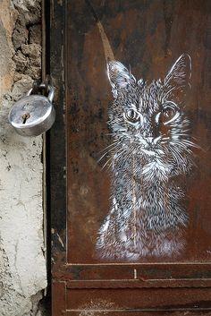 C215 - Cat Detail by Romany WG