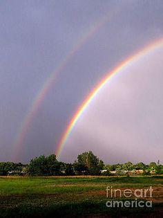 Rainbow x 2 by Diane M Dittus