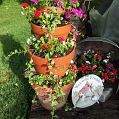 Here is a pic with vinca vine,can't wait for it to grow out more....I enjoyed making it...