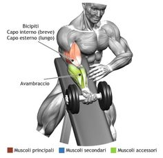Muscle Building Tips. Grow Strong, Live Long: Fitness Secrets From The Experts. Many people consider fitness to be an important goal. However, it can be difficult to find the right information you need about fitness due to the vast amo Fitness Gym, Muscle Fitness, Mens Fitness, Fitness Tips, Fitness Motivation, Health Fitness, Lifting Motivation, Fitness Shirts, Muscle Food