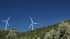 Olive Trees And Wind Power ...  alternative energy, blue sky, clean energetics, conservation, ecology, environment, generate, green energy, landscape, nature, power plant, propeller, renewable, wind power, wind turbine