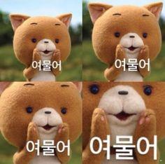 Korean Expressions, Korean Anime, Emoji, More Fun, Cool Designs, Funny Memes, Teddy Bear, Cartoon, Humor