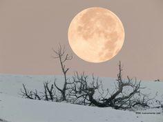 Porto Pino Sardinia // Maskamente #sardegna #moon #portopino #sea #sunset