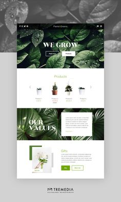 Web Design, Plants, Design Web, Plant, Website Designs, Planets, Site Design