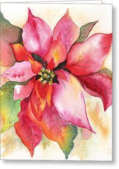 Christmas Poinsettia Greeting Card by Marsha Woods