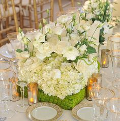 white flower centerpiece by Preston Bailey