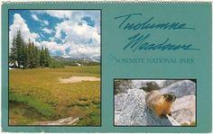 Tuolumne-Meadows-Yosemite-National-Park-California-1991-Multiview-Postcard