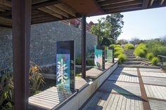 Taylor Cullity Lethlean - Carlton - Landscape Architects