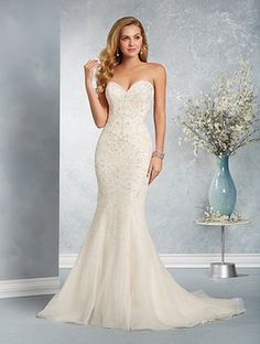 Alfred Angelo at The Bridal Connection, Longmont, CO