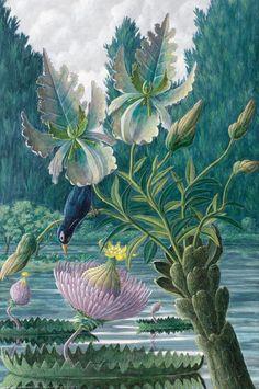Catharina Nymphaeoidea by Karl Axel Pehrson (Sweden, Phantasmagorical botany illustrator-AMAZING ! Illustration Botanique, Illustration Art, Illustrations, Botanical Drawings, Botanical Prints, Sibylla Merian, Tropical Art, Tropical Garden, Graphic