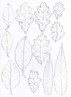 Leaf templates for all kinds of art projects art handouts, applique patterns, leaf patterns Fall Crafts, Arts And Crafts, Paper Crafts, Paper Leaves, Paper Flowers, Art Handouts, Leaf Template, Ideias Diy, Autumn Art