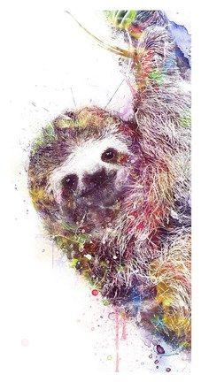 Amanti Art Sloth x Framed Wall Art Baby Sloth, Cute Sloth, Poster Art, Poster Prints, Sloth Drawing, Sloth Tattoo, Vintage Poster, Art Series, My Spirit Animal