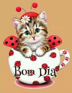 cute Ladybug cat Diamond Mazayka DIY Diamond Painting Embroidery Rhinestone Diamond Mosaic picture for sale new 1 Cute Kittens, Mosaic Pictures, Cross Paintings, Cat Art, Cute Pictures, Cute Animals, Cross Stitch, Kitty, Pets