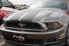 Hot Trends in Vehicle Graphics / Wraps | The Signs of Business
