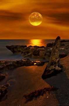 Moonrise over Stuart Florida Martin County by Justin Kelefas HDRcustoms.com