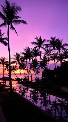 Super Ideas for summer nature photography sunset palm trees Beach Wallpaper, Summer Wallpaper, Iphone Background Wallpaper, Couple Wallpaper, Emoji Wallpaper, Beautiful Nature Wallpaper, Beautiful Sunset, Beautiful Landscapes, Beautiful Guys