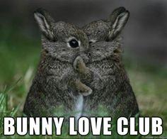 Bunny Love Club