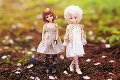 liccalicca:   I was taking this pic in the middle of an April shower and, luckily, the trees I was under caught most of the rain. The ground was littered with apple tree blossoms. Breza and Morris, both Castle Liccas, are wearing spring dresses made of light gauze fabric. Morris' (right) outfit is by Wimukt aka Foxybrowny. Her old-fashioned booties are Momoko. The seller didn't specify which doll/shoe collection they originate from but I think they're from Sekiguchi Momoko Smile Wedding…