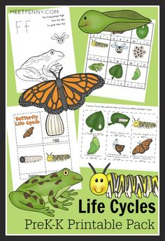 Teaching life cycles through printable worksheets and activities. Lots of hands on fun for preschoolers and kindergarteners.  Includes frog life cycle printables and butterfly life cycle printables.