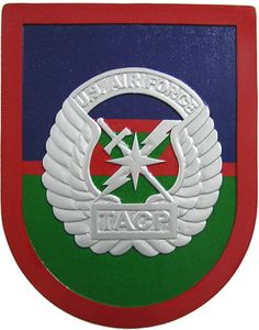 US Air Force TACP Plaque. Starts at $97.95