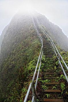 Stairway to heaven on Oahu, Hawaii.
