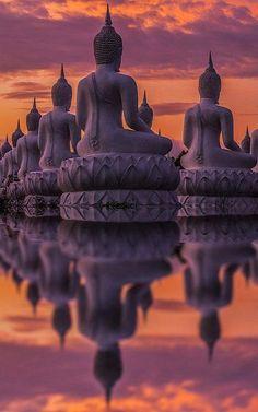 Many Buddha statue on sunset, India (by Anek Suwannaphoom)