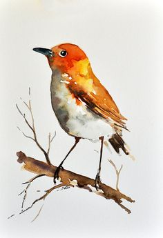 Items similar to ORIGINAL Watercolor Bird Painting, Bright Colored Sparrow Portrait Inch on Etsy Watercolor Bird, Watercolor Animals, Watercolor Paintings, Original Paintings, Bird Illustration, Bird Drawings, Bird Prints, Bird Art, Beautiful Paintings