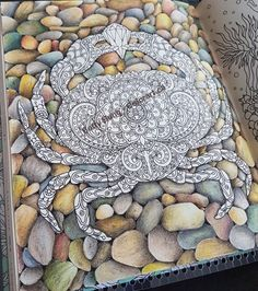 Color Pencil Drawing Tutorial rock background using colored pencils Pencil Drawing Tutorials, Pencil Drawings, Drawing Ideas, Drawing Tips, Rock Background, Background Drawing, Blending Colored Pencils, Colored Pencil Techniques, Coloring Rocks