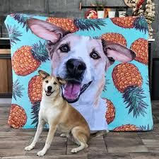 Print Your Pet Is The Leader In Premium Custom Printed Pet Apparel Including T Shirts Socks Blankets And Phone Cases E Your Pet Dog Wallpaper Dog Blanket