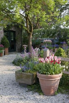 Gardening Container Gorgeous Gravel Garden Ideas that Inspire. - Gorgeous Gravel Garden Ideas that Inspiring Diy Garden, Garden Cottage, Garden Care, Spring Garden, Shade Garden, Dream Garden, Garden Paths, Garden Projects, Garden Planters