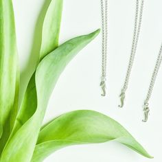 The Seahorse Necklace - Muizee Little Sisters, Arrow Necklace, Fine Jewelry, Instagram, Jewelry