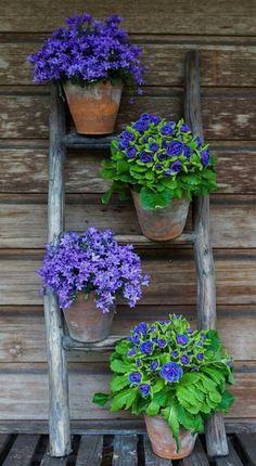 Stunning Wooden Garden Planters Ideas Try – DIY Garten Box Garden Stand, Garden Boxes, Wooden Garden Planters, Sweet Home, Vegetable Garden Tips, Diy Plant Stand, Plant Stands, Beautiful Flowers Garden, Garden Projects