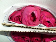The true purple rose: Gospel Garden Roses, Purple Roses, Desserts, Food, Tailgate Desserts, Deserts, Essen, Purple Rose, Postres