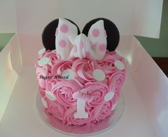 Mini Mouse First Birthday, First Birthday Theme Girl, Half Birthday Baby, Half Birthday Cakes, Minnie Mouse Birthday Decorations, Minnie Mouse Birthday Outfit, Birthday Cake Decorating, Minnie Mouse Party, Toddler Birthday Themes