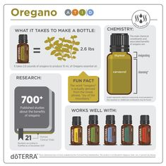 "Oregano essential oil has powerfully cleansing properties and supports the immune, respiratory, and digestive systems.* Known as ""the oil of humility,"" Oregano was revered by the ancient Greeks for its taste and its countless health benefits. Helichrysum Essential Oil, Oregano Essential Oil, Essential Oil Blends, Doterra Oregano Oil, Oils For Energy, Oregano Oil Benefits, Carrier Oils, Doterra Essential Oils, Oil Diffuser"
